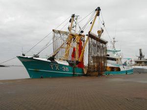 Photo of TX-38 BRANDING 4 ship