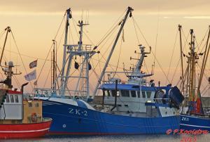 Photo of ZK2 PORTUNUS ship