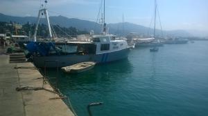 Photo of MONELLO ship