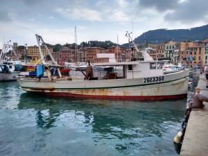 Photo of IMPAVIDO ship