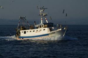 Photo of MIRELLA ship
