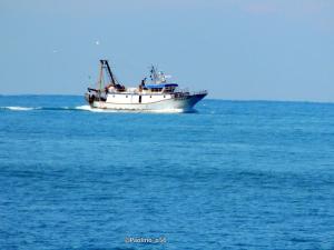 Photo of GUERRIERO ship