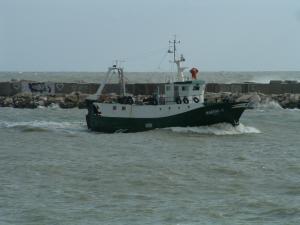 Photo of MARINA O. ship