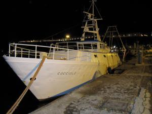 Photo of CUCCIOLO ship