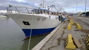 Photo of INDOMITA ship