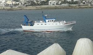 Photo of LUIGI CASOLE ship