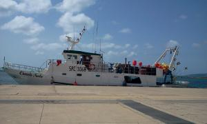 Photo of CARMELA MADRE ship