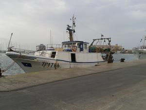 Photo of SPIGOLA PRIMA ship