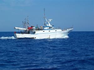 Photo of ALFIERE ship