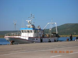 Photo of GIUSEPPA MADRE ship