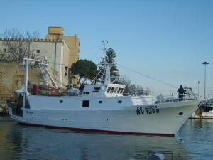 Photo of KATIUSCIA ship