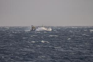 Photo of S FRANCESCO DI PAOLA ship