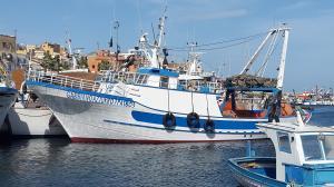 Photo of GABBIANO AZZURRO ship