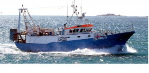 Photo of DELFINO ship