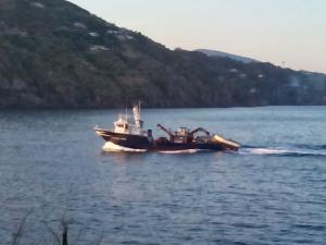 Photo of FUTURA PRIMA ship