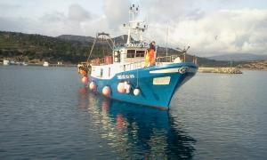 Photo of TORNADO ship