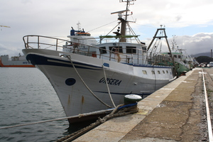 Photo of ORSERA ship
