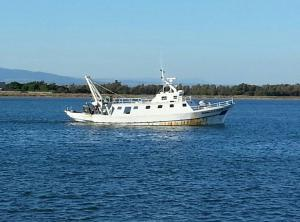 Photo of ROSINA ship