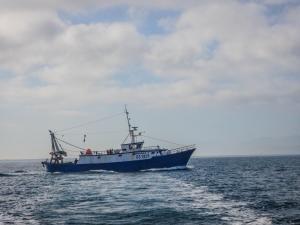 Photo of FRANCA.TALLARICO ship
