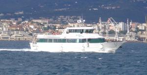 Photo of DELFINO VERDE V ship