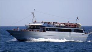 Photo of MARIA MADRE ship