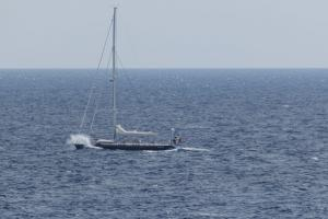 Photo of S/Y  DESIRADE III ship