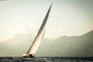 Photo of WHITEFIN ship