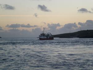 Photo of STARONIA_II ship
