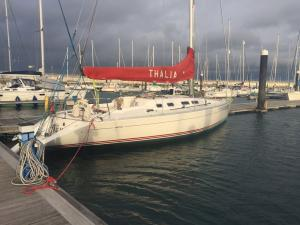 Photo of THALIA ship