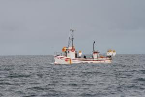 Photo of GOSI ship