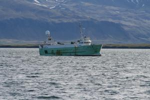 Photo of GUDBJORG SIG. ship