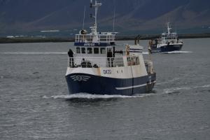 Photo of ARNTHOR ship
