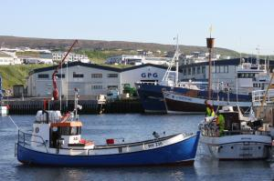 Photo of SAEVALDUR ship