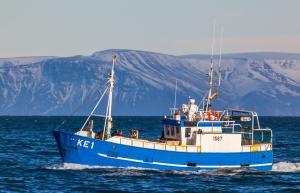 Photo of SAEVAR KE-15 ship