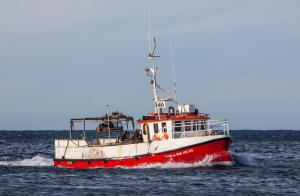 Photo of SVALA DIS ship