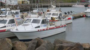 Photo of UGGI ship