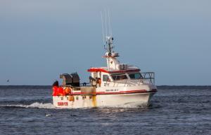 Photo of ELLI P ship