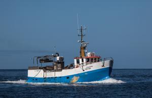 Photo of HALLDOR AFI ship
