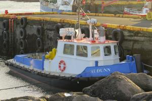 Photo of AUDUNN PILOT ship