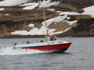 Photo of SKALEY SH-300 ship