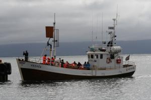 Photo of SYLVIA ship