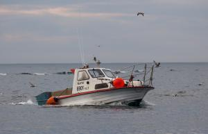 Photo of NAFNI ship