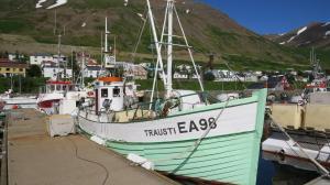 Photo of TRAUSTI ship