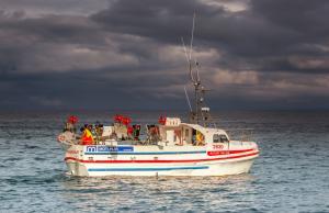 Photo of ALFUR ship