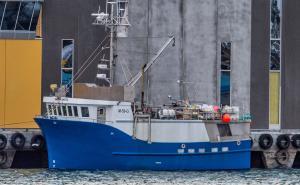Photo of GUNN ANITA ship