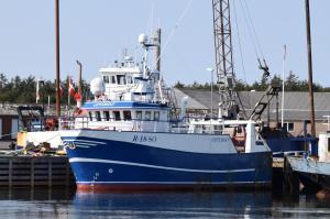 Photo of OPTIMIST ship