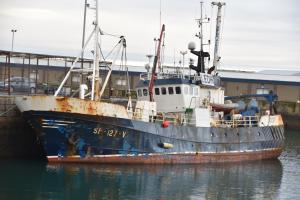 Photo of RINGBAS ship