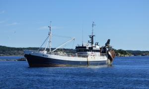 Photo of MONSUN ship