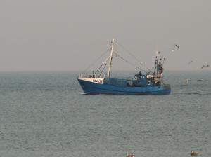 Photo of WLA-196 ship