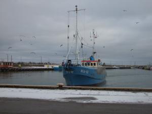 Photo of WLA161 MARIA II ship